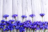 Mooie korenbloemen op houten achtergrond — Stockfoto