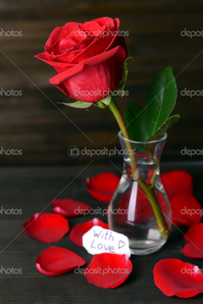 Vase of Roses on Table Beautiful Red Rose in Vase on