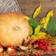 Autumn still life with pumpkin. Color palette with complimentary swatches — Stock Photo #47211245