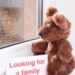 Toy-bear looking out window close-up — Stock Photo #47212857