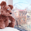 Toy-bear looking out window close-up — Stock Photo #47212921