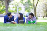 Zadowoleni uczniowie w parku — Zdjęcie stockowe