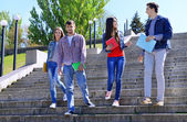 Happy students on stairs in park — Stock Photo
