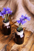 Beautiful cornflowers in glass bottles on wooden background — Stock Photo