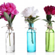 Beautiful pink peony flowers in glass vases, isolated on white — Stock Photo #47350667
