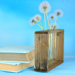 Dandelions in vases on blue background — Stock Photo #47397769