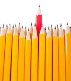 Celebratory pencil among usual pencils, isolated on white — Stock Photo