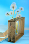 Dandelions in vases on blue background — Stock Photo