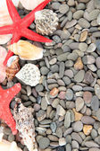 Small sea stones and shells, close up — 图库照片