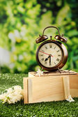Alarm clock on green grass, on nature background — 图库照片
