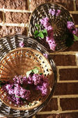 Beautiful lilac flowers in wicker basket on color stones background — Stock Photo