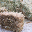Bales of hay in barn — Stock Photo #47546281