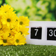Digital alarm clock on green grass, on nature background — Stock fotografie #47546793