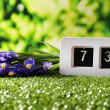 Digital alarm clock on green grass, on nature background — Stock fotografie #47549317