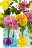 Beautiful flowers in vases with hydrogel close up — Stock Photo