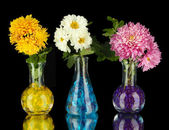 Beautiful flowers in vases with hydrogel isolated on black — Stock Photo