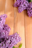 Beautiful lilac flowers on wooden background — Stock Photo