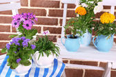 Flowers in  decorative pots on table, on bricks background — Stock Photo
