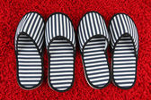 Striped slippers on carpet background — Photo