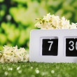Digital alarm clock on green grass — Stockfoto