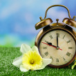 Alarm clock on green grass, on nature background — Stock Photo #47553057