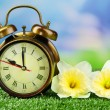 Alarm clock on green grass, on nature background — Stock Photo #47557153