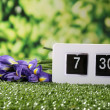 Digital alarm clock on green grass, on nature background — Stock fotografie #47558585