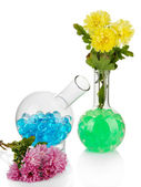 Beautiful flowers in vase with hydrogel isolated on white — Stock Photo