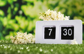 Digital alarm clock on green grass — 图库照片