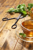 Composition of fresh mint tea in glass cup and teapot  on wooden background — Stock Photo