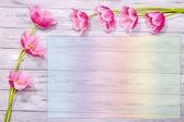 美丽的花朵,颜色木制背景 — 图库照片
