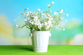 Bright wildflower in decorative bucket on wooden table, on light background — Stock Photo