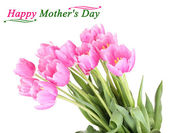 Beautiful pink tulips, isolated on white — Stock Photo
