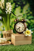 Alarm clock on green grass — 图库照片
