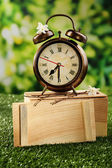Alarm clock on green grass — Stock Photo