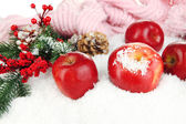 Red apples with fir branches and knitted scarf in snow close up — Stockfoto