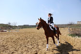 Beautiful girl riding a horse outdoors — ストック写真