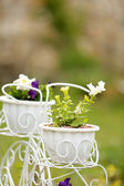 Flowers in decorative flower pots, outdoors — Stock Photo