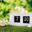 Digital alarm clock on green grass, on nature background — Stock fotografie
