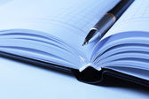 Pen on opened book, close up — Stock Photo
