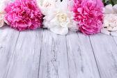 色木背景上艳丽的粉色和白色牡丹 — 图库照片