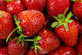 Red ripe strawberries, close up — Stock Photo