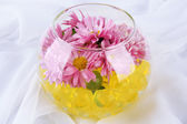 Beautiful flower in vase with hydrogel on fabric background — Stock Photo
