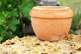 Old brown flower pot, outdoors — Stock fotografie