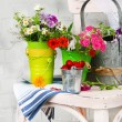 Bouquet of colorful flowers and fresh cherries in decorative buckets, on chair, on light wall background — Stock Photo #47926145