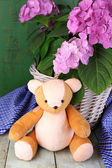 Hydrangea in basket with teddy bear close-up — Stock Photo