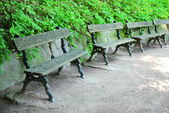 Wooden benches at park — Stock Photo
