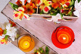 Bright icon-lamps with flowers on wooden ladder on light background — Stock Photo