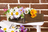 Beautiful flowers in crate on brick wall background — Stock Photo