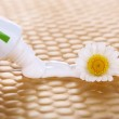 Toothpaste squeezed from tube, chamomile flower, close-up, on bright background — Stock Photo #47963061
